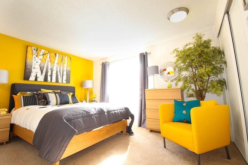 Renton Woods Apartments For Rent In Renton Wa
