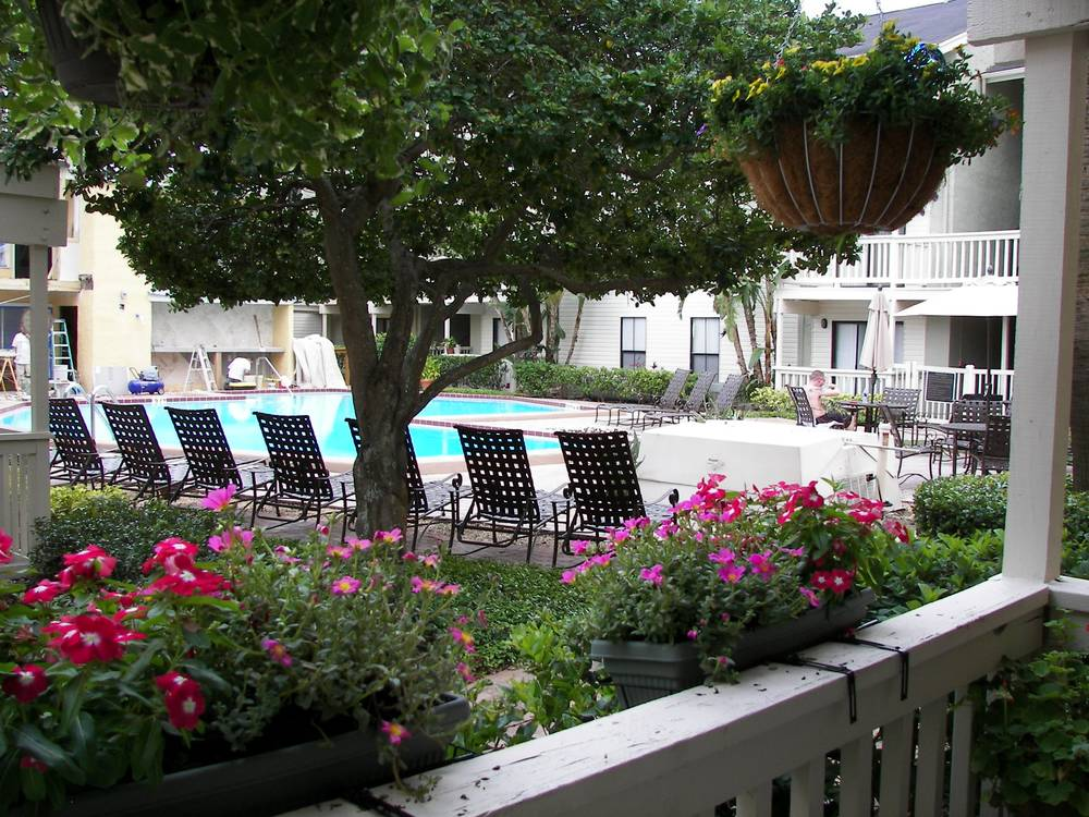 Bay Oaks, Apartments for Rent in Tampa, FL